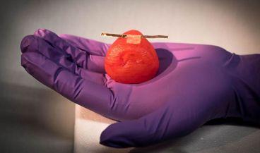 Los investigadores están desarrollando modelos de órganos de próxima generación para la práctica preoperatoria