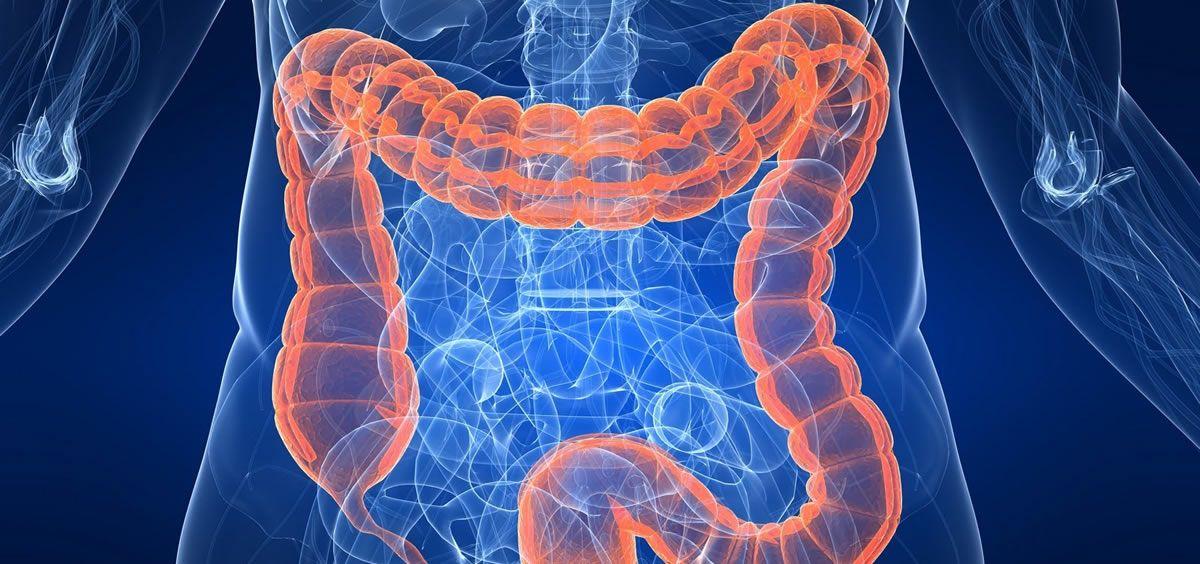Desarrollan un microdispositivo para administrar fármacos en el tracto gastrointestinal