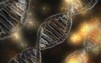 Las técnicas CRISPR permiten el desarrollo de nuevas aplicaciones de diagnóstico médico.