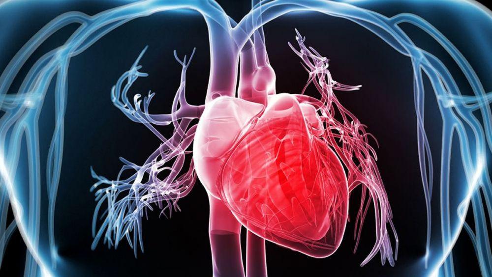 Desarrollan una app para medir la rigidez arterial