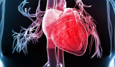 El implante detecta la parada cardiaca para que al paciente le de tiempo a reaccionar