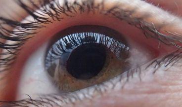 Investigadores de la UPV crean un nuevo sistema para la detección temprana de daños en la retina