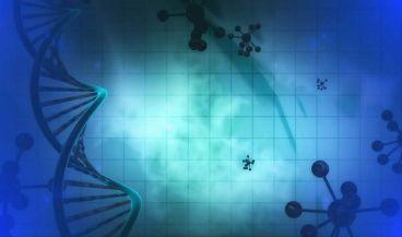 Nuevo sistema basado en análisis de datos para tratamientos individualizados contra el cáncer