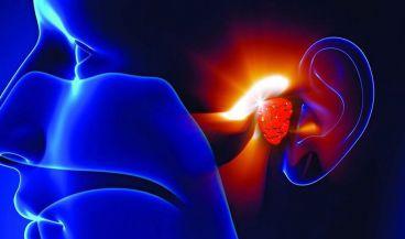 Un robot quirúrgico inteligente facilita los implantes de oído