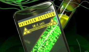 La app gratuita permite estudiar los cambios químicos que indican la presencia de estas bacterias patógenas | Imagen: Peter Allen y Brian Long