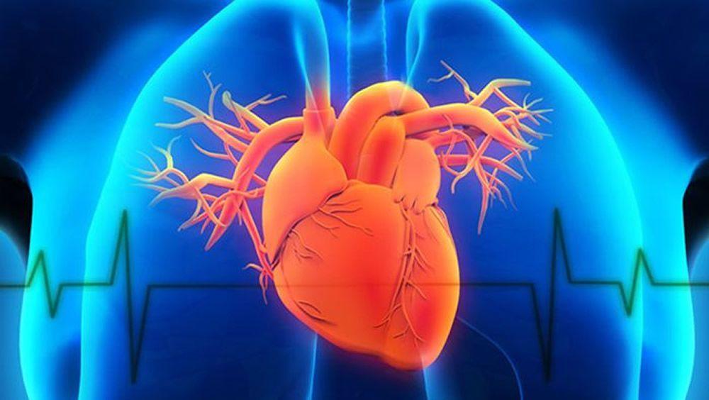 Innovación algorítmica, nuevo método para reducir los procedimientos cardíacos invasivos