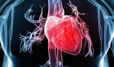 Diseñan una herramienta de detección cardiaca automatizada