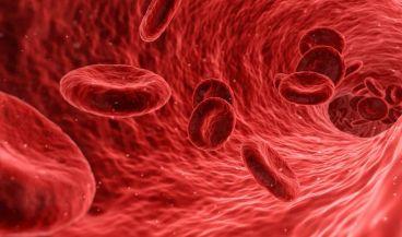 Detectar un tumor antes de que aparezca será posible en los próximos años gracias a un análisis de sangre