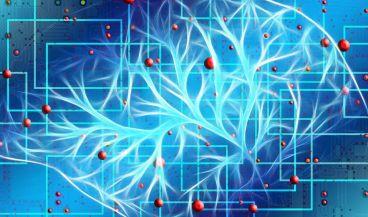 La inteligencia artificial podría predecir la propagación del melanoma