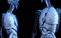 Una máquina de Google detecta el cáncer de pulmón antes y mejor que los médicos