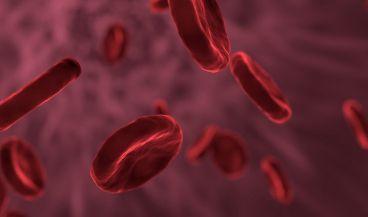 El dispositivo examina de manera continua la sangre con el objetivo de detectar células tumorales