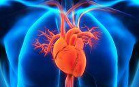 Sensores vitales flexibles hechos de grafeno para medir la frecuencia cardíaca