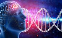 Estimulación eléctrica de baja frecuencia para la caída del cabello