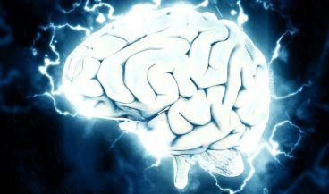Pocos meses después de iniciar el tratamiento con estimulación eléctrica se restauraron las áreas cerebrales