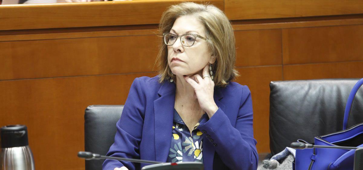La consejera de Sanidad, Pilar Ventura (Foto. Cortés de Aragón)