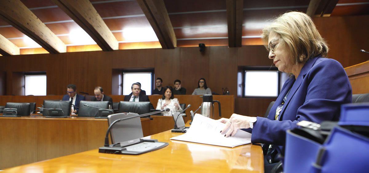 La consejera de Sanidad, Pilar Ventura.