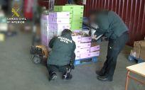 Agentes de la Guardia Civil participan en la operación Opson VIII | Foto: Guardia Civil