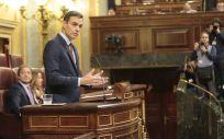 Pedro Sánchez, presidente del Gobierno en funciones, en el Congreso de los Diputados. (Foto. La Moncloa)