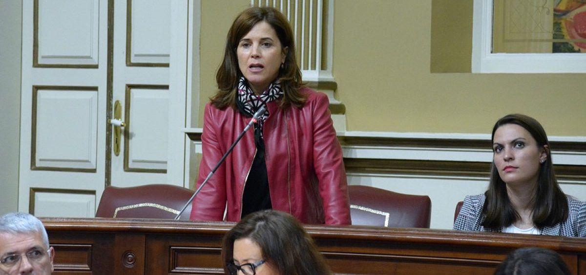 Teresa Cruz Oval, consejera de Sanidad en Canarias (Foto. PSOE Canarias)
