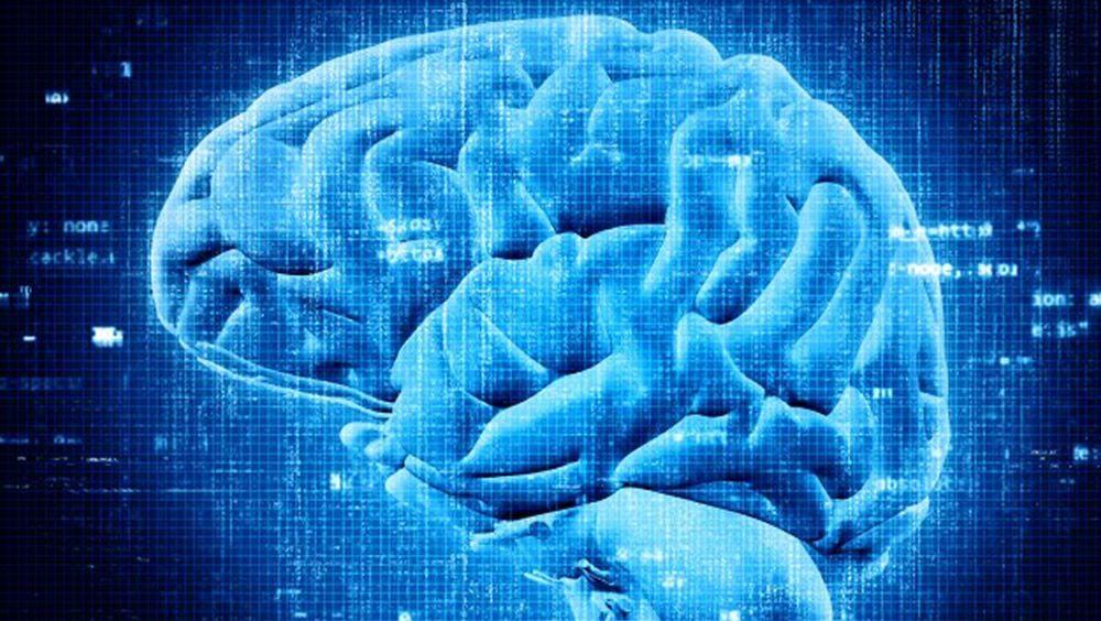 Imagen cerebro en 3D (Foto. Freepik)