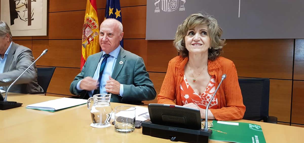 La ministra de Sanidad en funciones, María Luisa Carcedo, junto a Faustino Blanco, secretario general de Sanidad (Foto: ConSalud.es)