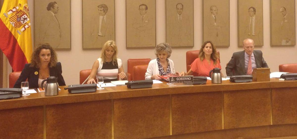 Mesa de la Comisión de Sanidad del Congreso con la asistencia de María Luisa Carcedo (Foto: @gpscongreso)