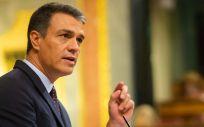 El presidente del Gobierno en funciones, Pedro Sánchez, en el Congreso