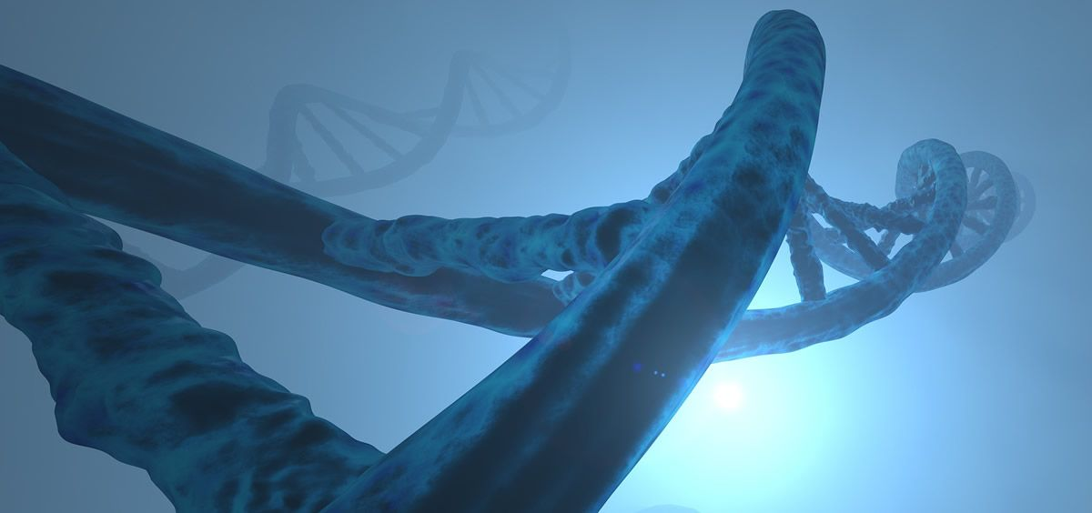 Genética (Foto: Pixabay)