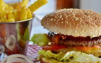 Los menús de comida rápida suelen ofrecer altos niveles de fructosa y grasas (Foto. Pixabay)