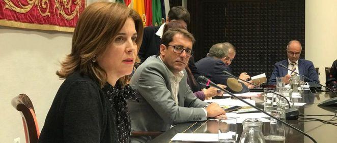 La consejera de Sanidad de Canarias, Teresa Cruz, en la Comisión de Sanidad del parlamento canario. (Foto. @sanidadgobcan)