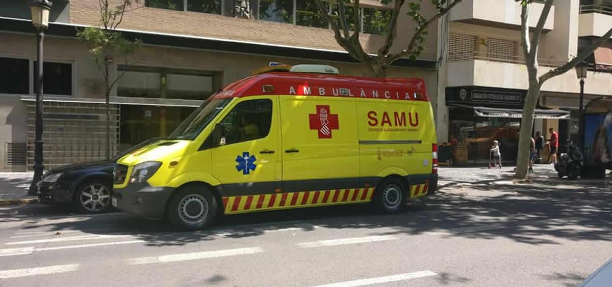 Samu Comunitat Valenciana (Foto. @avesvalencia)