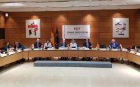 Pleno del Consejo Interterritorial del SNS, instantes antes de su comienzo (Foto: ConSalud.es)