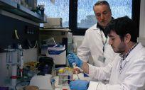 Investigadores del OncObesidad y Metabolismo del Instituto Maimónides de Investigación Biomédica de Córdoba (Imibic) (Foto. ConSalud)