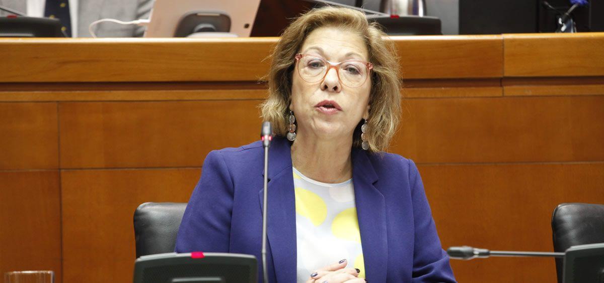 Pilar Ventura, consejera de Sanidad del Gobierno de Aragón. (Foto. Flickr Cortes de Aragón)