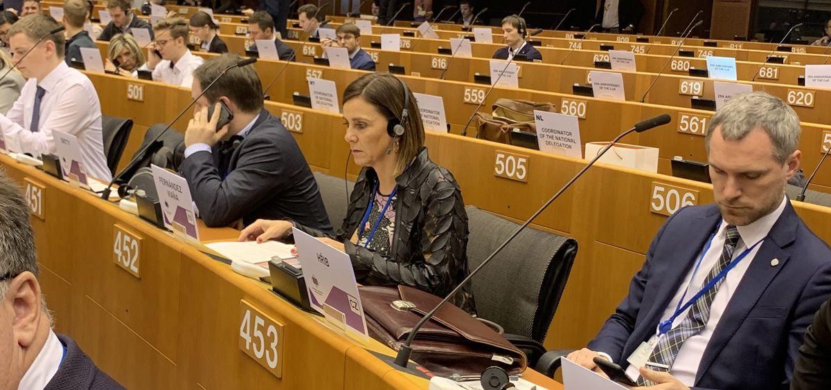 La consejera Fernández Viaña, en el pleno del Comité de las Regiones (Foto: Gobierno de Cantabria)