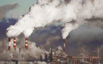 Las condiciones ambientales afectan al 20% de la mortalidad y al 25% de la morbilidad (Foto. Freepik)