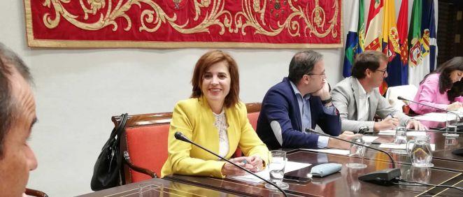 La consejera de Sanidad de Canarias, Teresa Cruz Oval (Foto. Gobierno de Canarias)