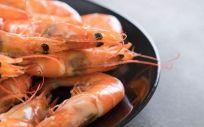 Recomiendan reducir el consumo de cabezas de crustáceos (Foto. Freepik)