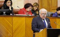 El consejero de Salud y Familias, Jesús Aguirre, durante su intervención en el pleno. (Foto. Junta de Andalucía)