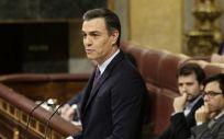 Pedro Sánchez, durante la sesión de investidura. (Foto. Congreso)