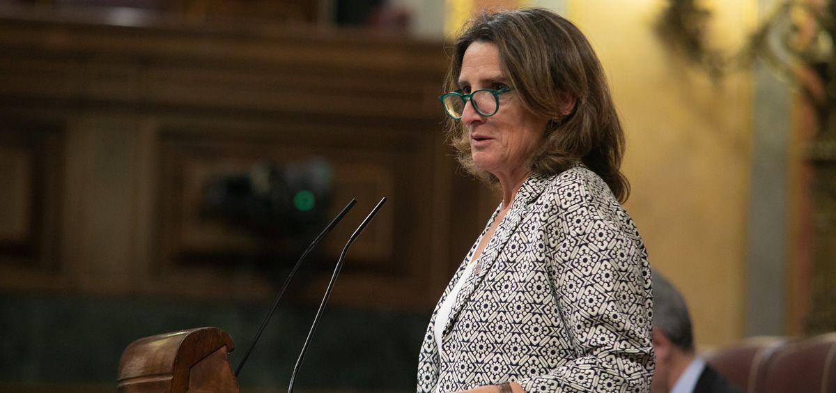 Teresa Ribera, vicepresidenta cuarta y ministra para la Transición Ecológica y el Reto Demográfico (Foto. Flickr PSOE)