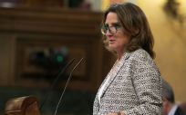 Teresa Ribera, nueva ministra para la Transición Ecológica y el Reto Demográfico (Foto. Flickr PSOE)