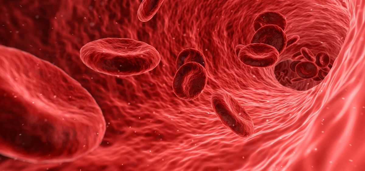 Glóbulos rojos (Foto: Pixabay)
