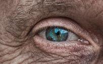 La DMAE es una enfermedad degenerativa y crónica del ojo, que constituye una de las principales causas de pérdida de capacidad visual grave en personas mayores de 50 años. (Foto. Pixabay)