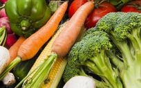 Las personas mayores con una dieta rica en flavonoles, un grupo de antioxidantes presente en frutas, verduras y té, pueden ser menos propensas a desarrollar la enfermedad de Alzheimer (Foto. Freepik)