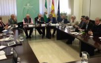Segunda reuión del Grupo Asesor de Andalucía (Foto. ConSalud)