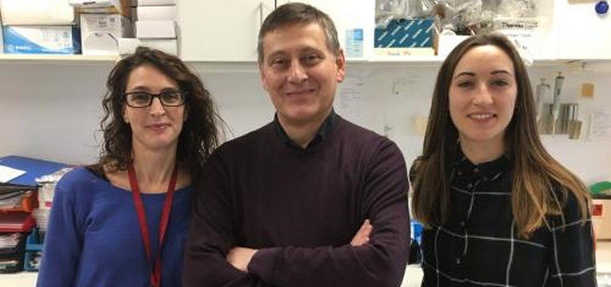 El estudio demuestra la capacidad inmunomoduladora de una molécula denominada C4BP, presente en nuestra sangre (Foto. IDIBELL)