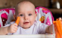 Bebe comiendo zanahoria (Foto. Freepik)