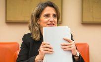 La vicepresidenta cuarta y ministra de Transición Ecológica y Reto Demográfico, Teresa Ribera (Foto: Congreso)