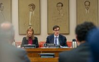 El ministro de Sanidad, Salvador Illa, compareciendo en la Comisión de Sanidad (Foto: Congreso de los Diputados)
